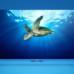 Xiaomi busca ahora conquistar tu televisión